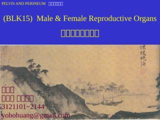 BLK15Reproductive Organs.ppt